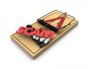 Domain name scam