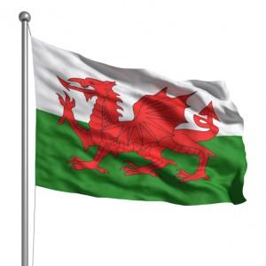 Welsh flag representing .cymru TLDs