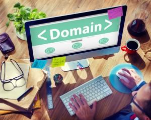 Domain name .Sucks